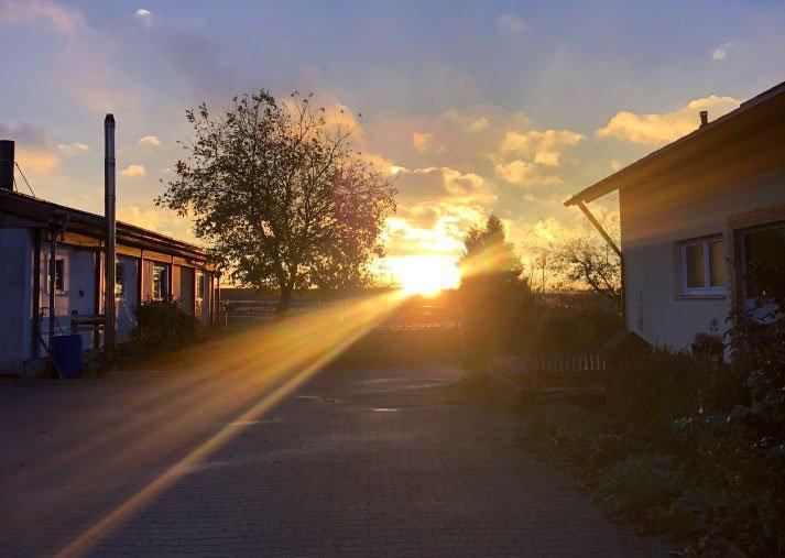 Die Zukunft als Landwirt in Hohenlohe – Gedanken zum Jahreswechsel